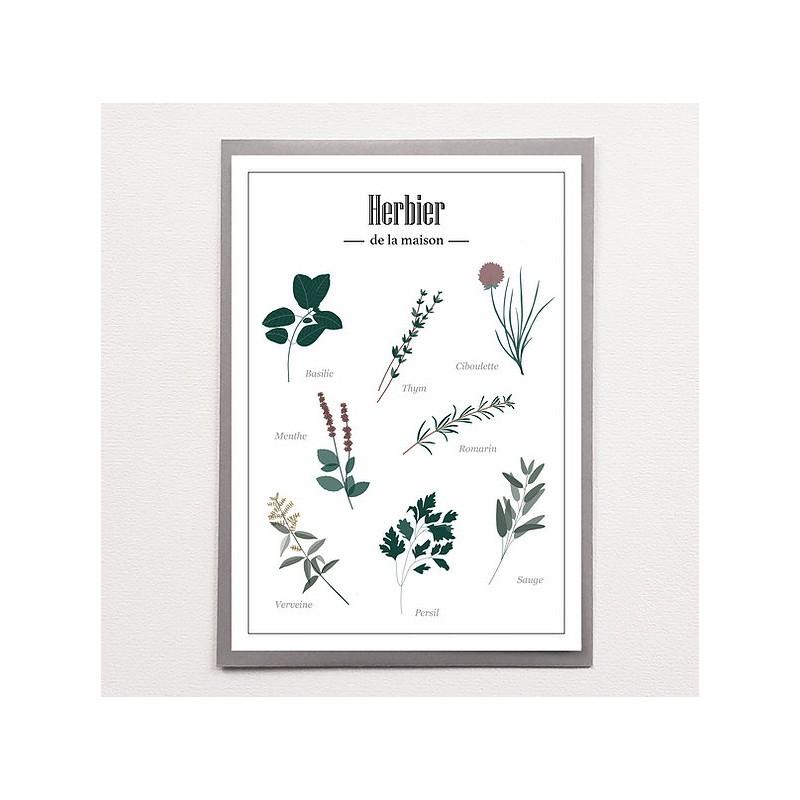 Affiche herbier - Poussière des rues